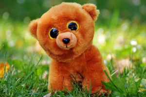 teddy-bear-861060_1920