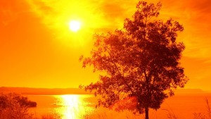 Bright Sunset HD Wallpaper